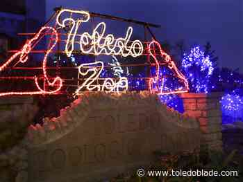 Toledo Zoo holiday lights again ranked 2nd best in national poll