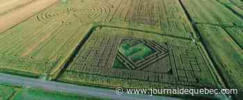 Un labyrinthe géant bientôt à Beauport?