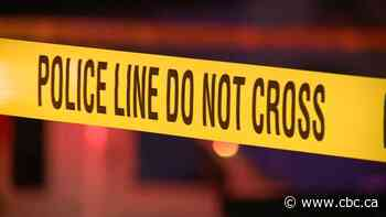 Pedestrian killed in Surrey after being struck by vehicle on Scott Road