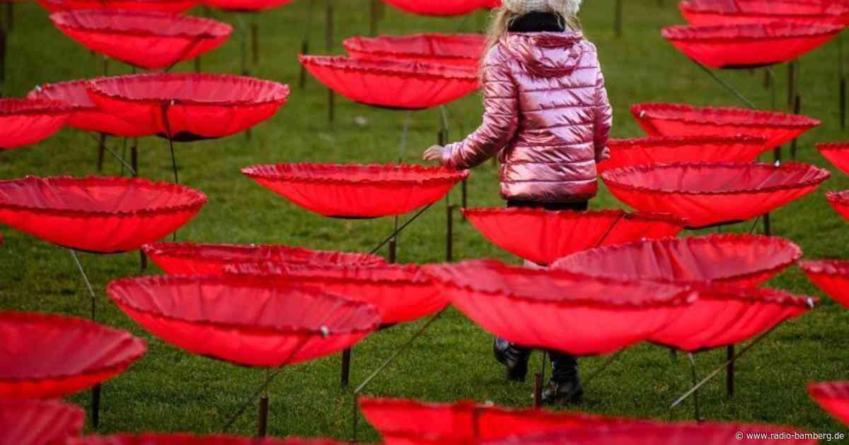Kunstaktion in Penzberg: 300 Mohnblumen für den Frieden