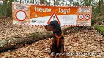 Landkreis Gifhorn senkt die Jagdsteuer