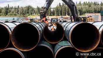 Trans Mountain oil pipeline faces latest legal challenge in Canada court