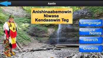 'It's our inherent right': Anishinaabemowin language app features Hamilton community members