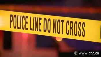 Pedestrian dies in Surrey after being struck by vehicle on Scott Road