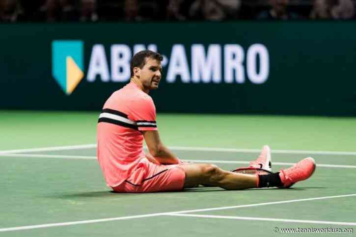 Grigor Dimitrov to Play in ATP Rotterdam Event in February
