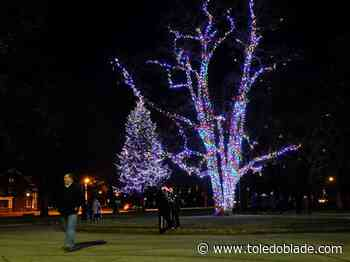 Tree decorating at Ottawa Park is light work