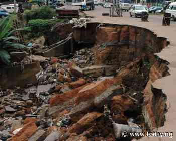 Group begs federal government to declare state of emergency on erosion in Southeast