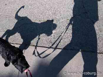 Mann beißt Hundebesitzer