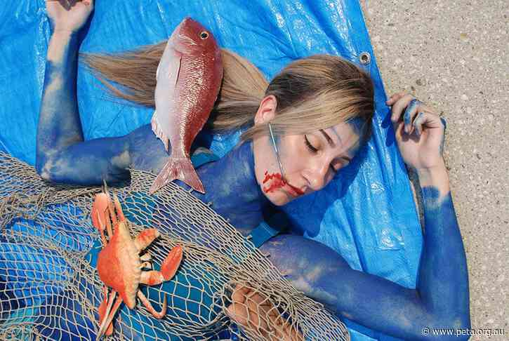 Netted 'Dead Fish' in Sydney Protest Christmas Seafood