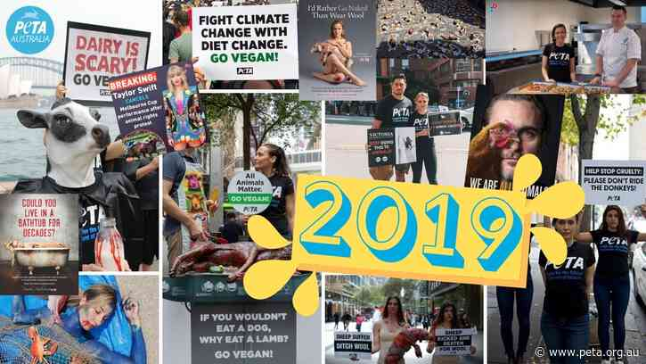 How Australia Changed for Good in 2019
