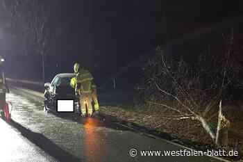 Paderborn: Zwei Schwerverletzte bei Kollision mit Baum