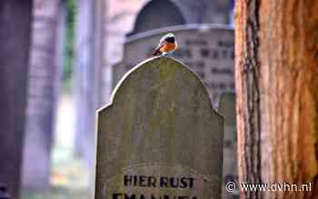 Dodenakker Winschoten paradijs voor vogels