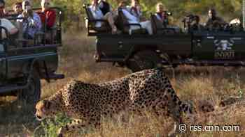 South Africa Park wants new technology rules to protect visitors and animals