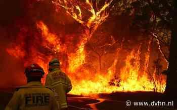 Australië brandt (en zo kun jij helpen)