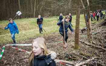 'We planten niet overal in Groningen bomen'