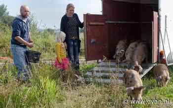 Waddenvarkens koopt slagerij in Uithuizermeeden: 'We gaan straks ook zelf slachten'