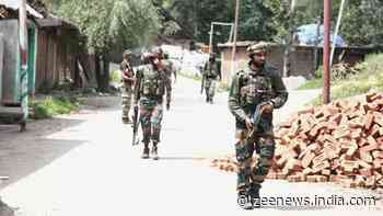 Top Hizbul-Mujahideen commander among two terrorists arrested in South Kashmir
