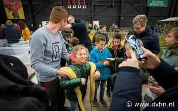 Noordshow laat jeugd knuffelen met dieren (maar hoe pak je ielig kuikentje op)