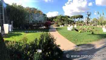 """""""Hobby Flora costretto a sgomberare"""", la petizione per salvare il garden del Torrino"""