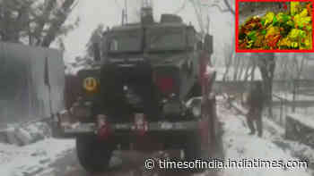 Security forces gun down 3 terrorists in J&K's Tral