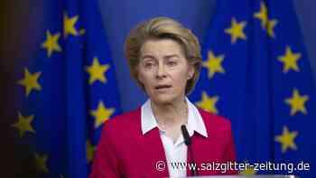 Riesiges Investitionsprogramm: Tausend Milliarden für Klimaschutz: EU präsentiert Pläne