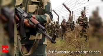 BSF opens fire at 'drone-like objects' near India-Pak border in Ferozepur