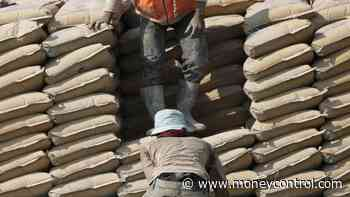 No health checkups of workers by cement majors, committee tells NGT