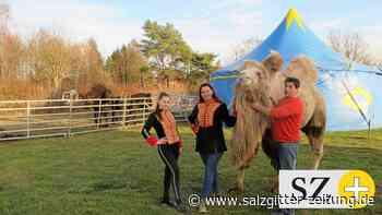 Zirkus Bravo gastiert in Wendeburg
