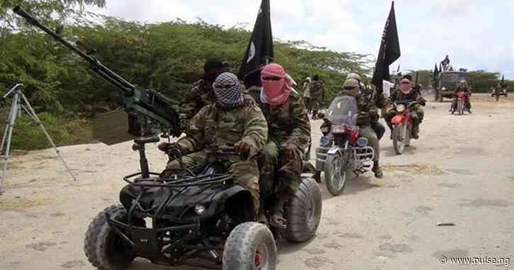 Boko Haram releases 5 aid workers abducted in Borno