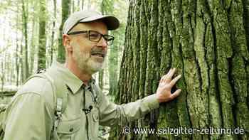Peter Wohlleben stellt in Braunschweig seinen Film vor