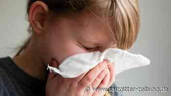 Sachsen-Anhalt: Doppelt so viele Grippefälle wie im Vorjahr