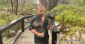 Severe storms cause flooding, road closures on Australia's east coast