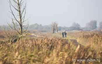 Op stap: Het is doodstil in het bos Hollandse Hout