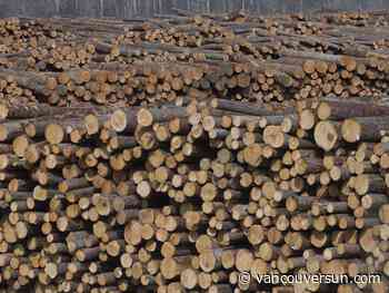 B.C.'s forest industry gasping amid seven-month strike, shutdowns, changes