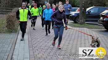 Ben läuft erstmals 63,5 Kilometer – auf vier Pfoten