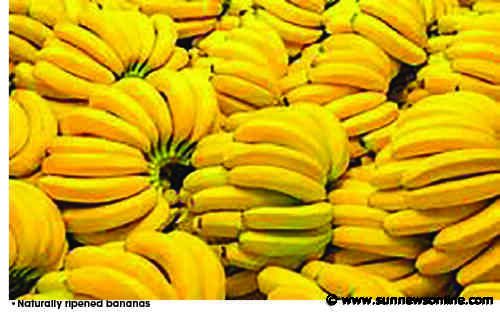 Anxiety over use of carbide on fruits deepens