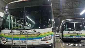 City council passes Transit Windsor's 8-year, $25.6M master plan
