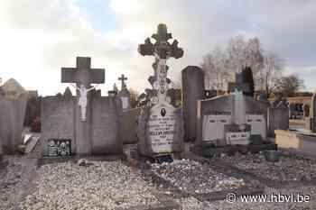 Ontgravingen op kerkhof in Witte Torenstraat