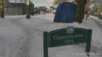 Oppenheimer Park not discussed at Vancouver Park Board meeting