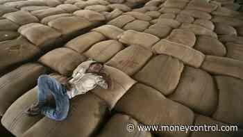 Agri produce trading touches Rs 91,000cr mark on e-NAM platform
