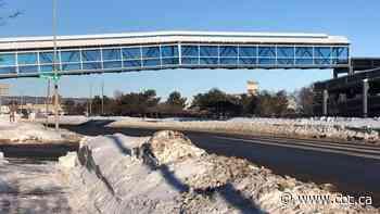 Future of Marina Park pedestrian overpass under scrutiny