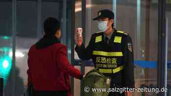 Weitere Todesfälle: Neues Virus in China: Erster Fall in USA nachgewiesen