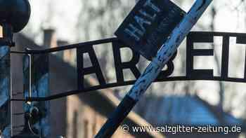 Antisemitismus nimmt zu: Steinmeier besucht Israel - Gedenken an Auschwitz-Befreiung