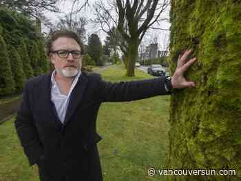 'Death warrant' for majestic maple trees near UBC sparks controversy