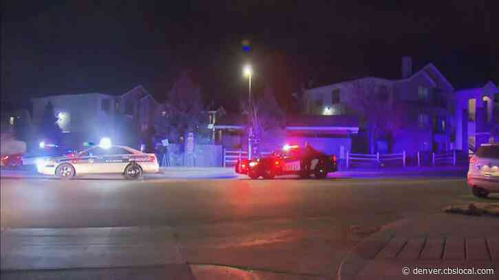 Shelter In Place Lifted After Car Theft Investigation, Shooting