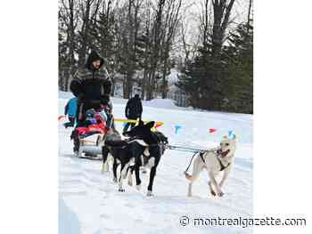 Pincourt holds outdoor Winterfest bash at Parc Olympique
