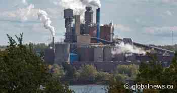 Nova Scotia pulp mill issues layoff notices as facility winds down operations