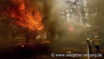 US-Feuerwehrleute abgestürzt: Australiens Feuer-Krise: Drei Tote bei Löschflugzeug-Crash
