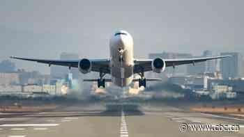 Michigan woman criticizes airline's handling of groping on flight