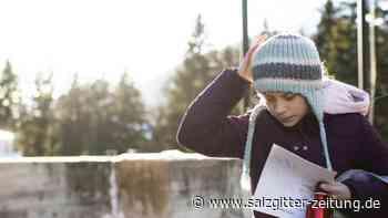 Weltwirtschaftsforum: Für mehr Klimaschutz: Thunberg demonstriert in Davos